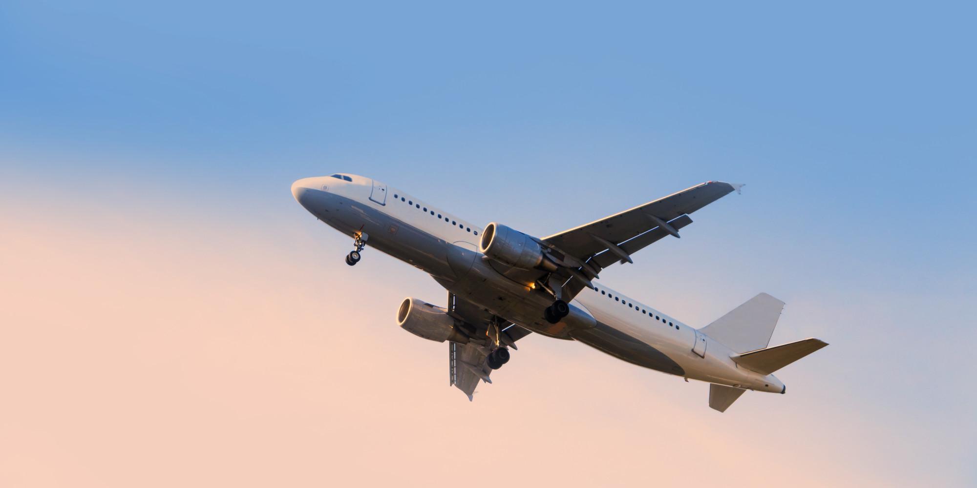 Take flight Silver